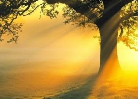TẮM NẮNG ĐÚNG CÁCH CÓ THỂ LÀM GIẢM VẨY NẾN